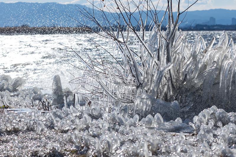 夕刻の飛沫氷(琵琶湖)_f0155048_22401028.jpg