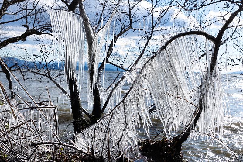 夕刻の飛沫氷(琵琶湖)_f0155048_22415367.jpg