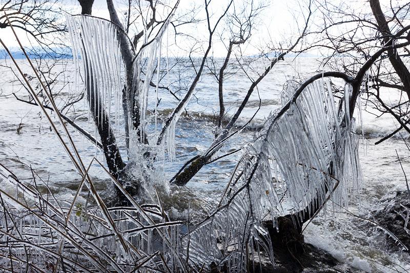 夕刻の飛沫氷(琵琶湖)_f0155048_22415640.jpg