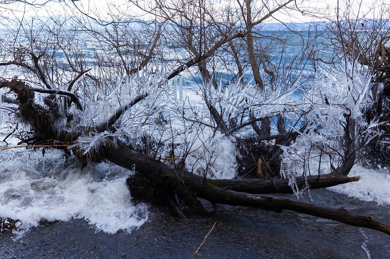 夕刻の飛沫氷(琵琶湖)_f0155048_22432989.jpg