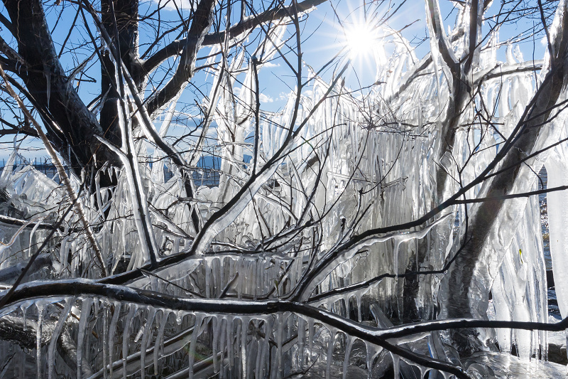 夕刻の飛沫氷(琵琶湖)_f0155048_22443256.jpg