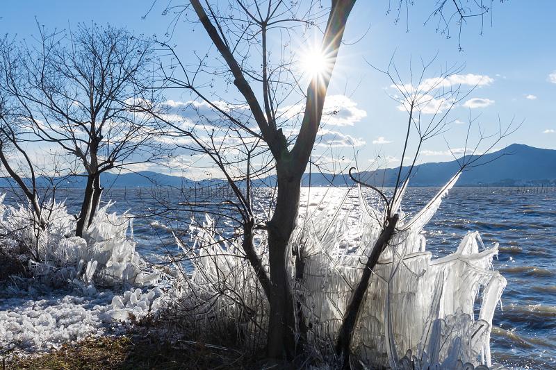 夕刻の飛沫氷(琵琶湖)_f0155048_22452738.jpg
