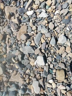 水曜日の浜歩き。(1月20日)_c0172261_10310022.jpg