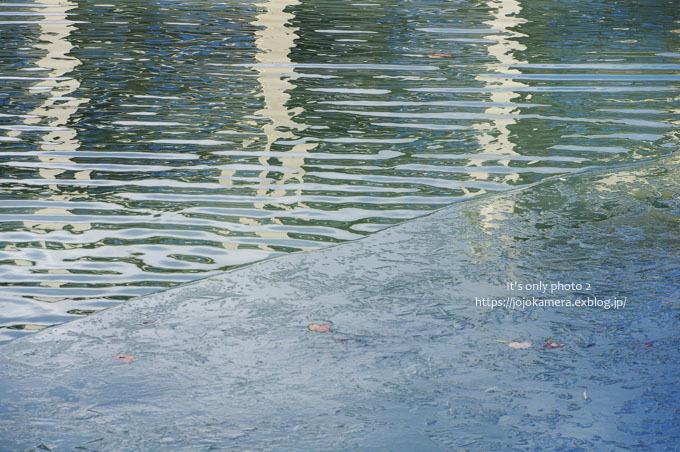 凍った池_b0391986_01042141.jpg