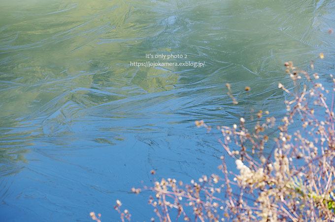 凍った池_b0391986_01051159.jpg