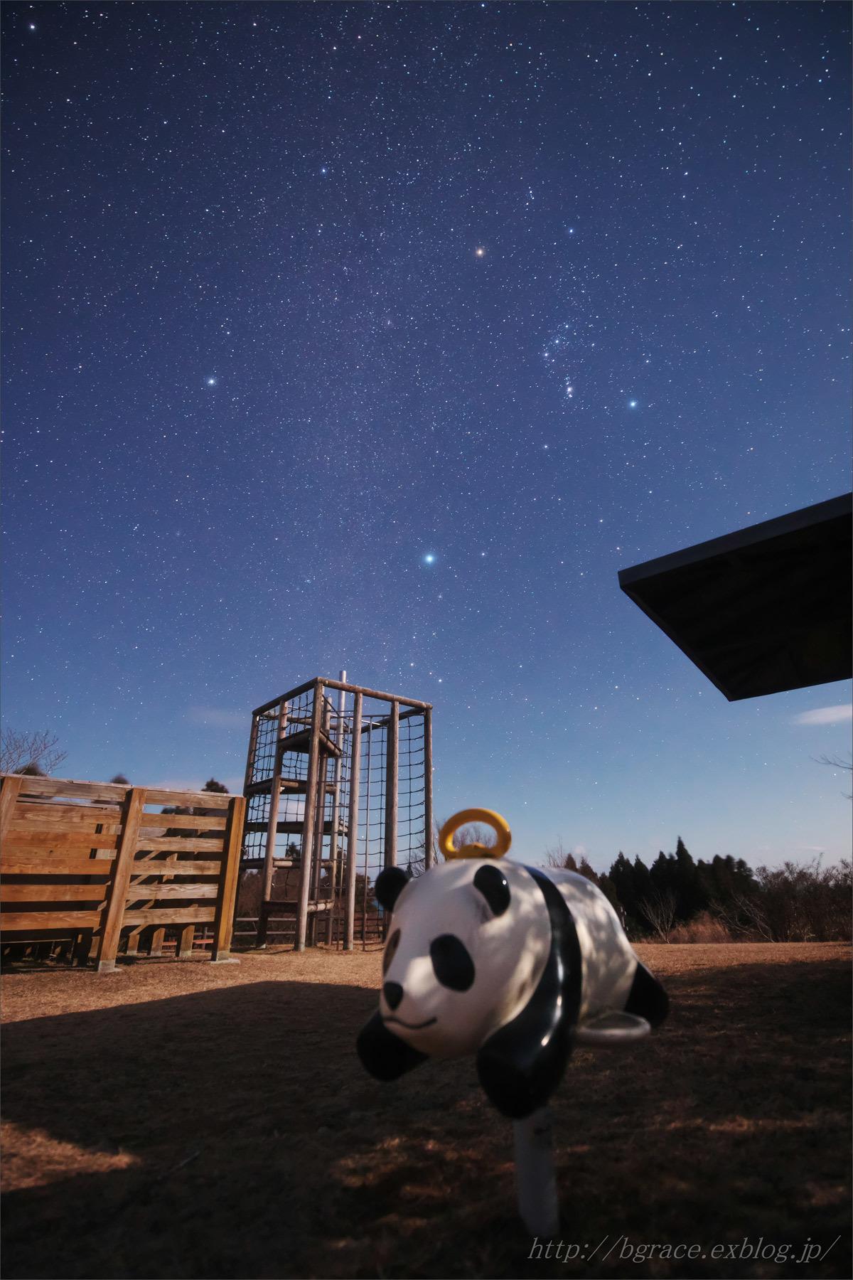 月夜の公園_b0191074_22170076.jpg