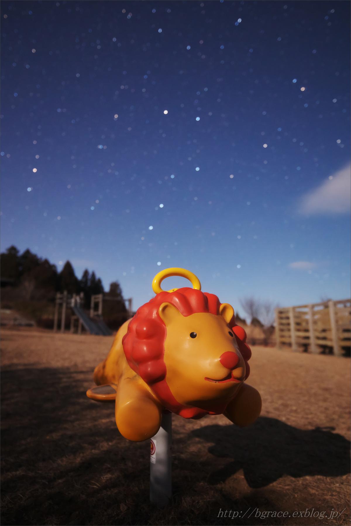 月夜の公園_b0191074_22170627.jpg