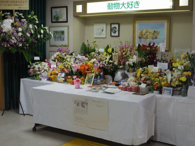 1月22日の円山動物園のアジアゾーン_b0014576_22583851.jpg