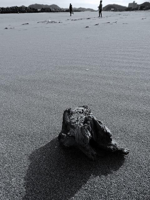 砂浜独り占め_d0110193_17481502.jpg