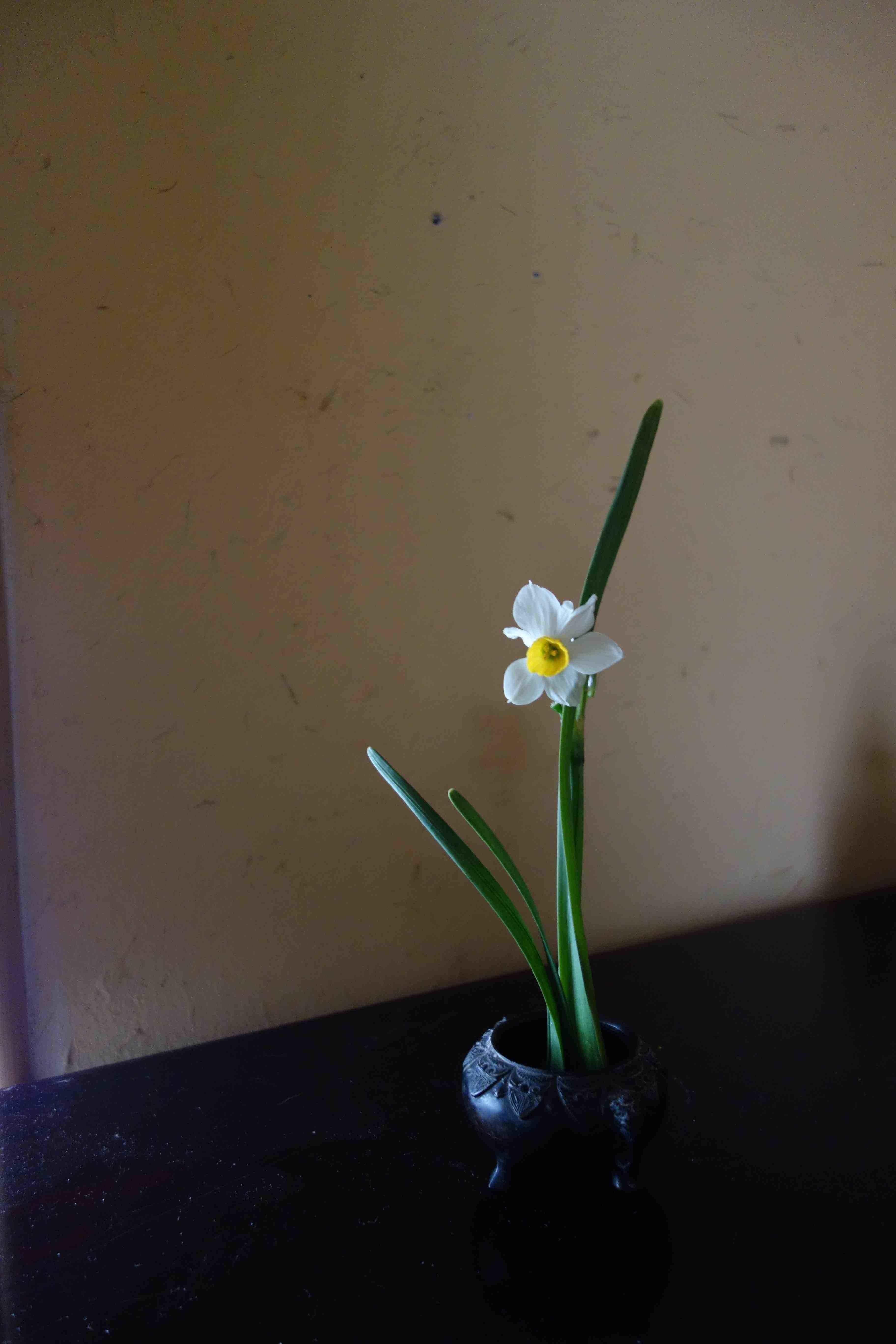 祇園にある美登英利さんの作品_a0197730_11350554.jpg