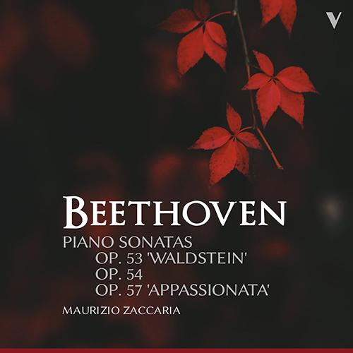 朝の一曲 166 ジャケットに魅かれてベートーヴェンのソナタを聴く_d0170835_11530548.jpg