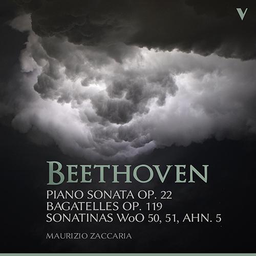 朝の一曲 166 ジャケットに魅かれてベートーヴェンのソナタを聴く_d0170835_11535079.jpg