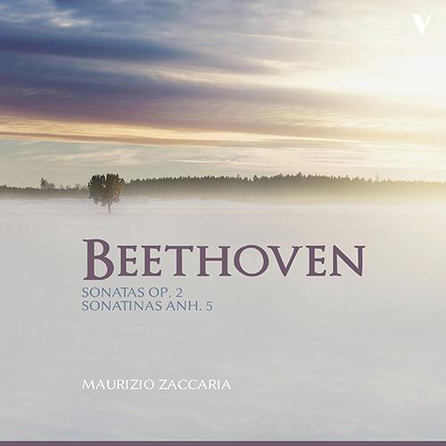 朝の一曲 166 ジャケットに魅かれてベートーヴェンのソナタを聴く_d0170835_11542959.jpg