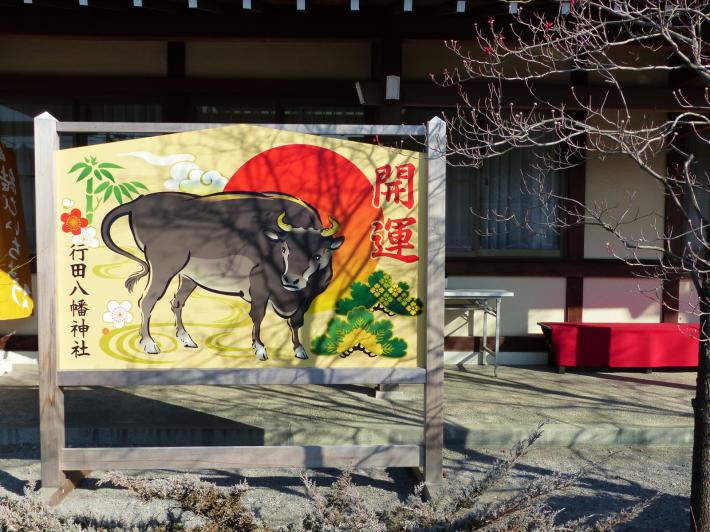 行田八幡神社にて初の花手水_f0296312_13261458.jpg