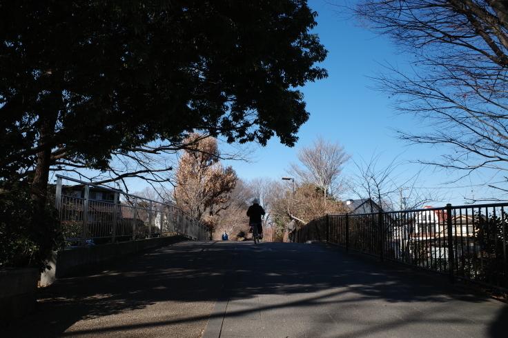 1月宿題店巡り その6 ~ 小平ふるさと村_a0287336_14444213.jpg