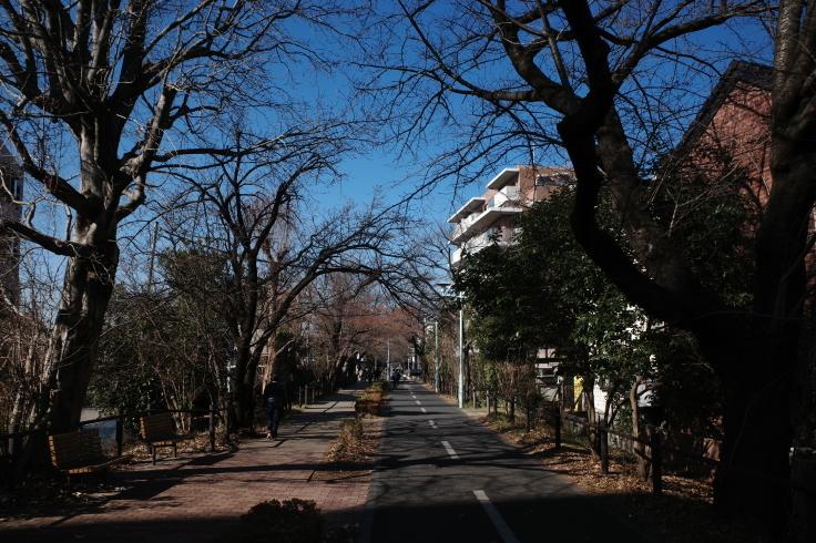 1月宿題店巡り その6 ~ 小平ふるさと村_a0287336_14474221.jpg
