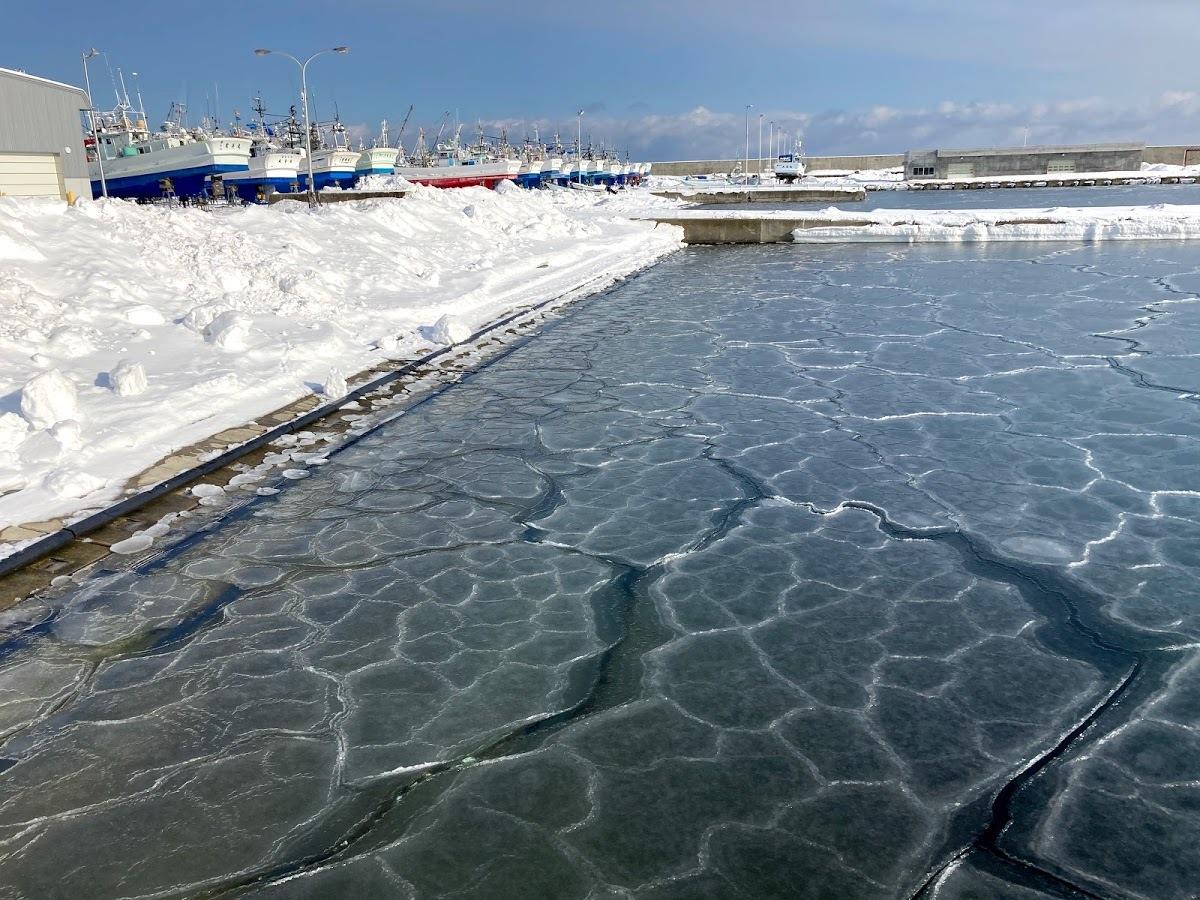 漁港、海水の結氷_c0189970_13242946.jpg