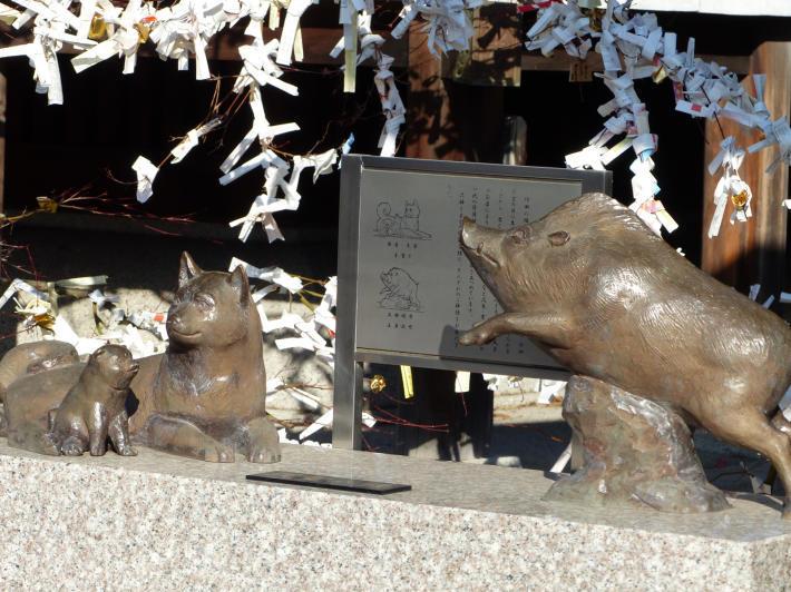 行田八幡神社にて初の花手水_f0296312_18044344.jpg