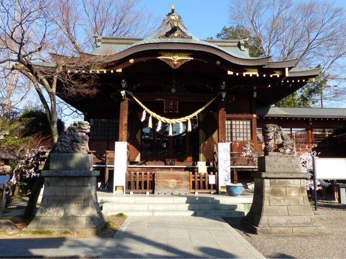 行田八幡神社にて初の花手水_f0296312_18281696.jpg