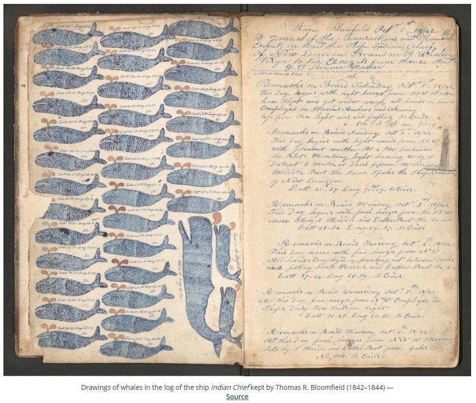 今日はプラス(ついでにアメリカ捕鯨船の航海日誌など)_c0025115_21570756.jpg