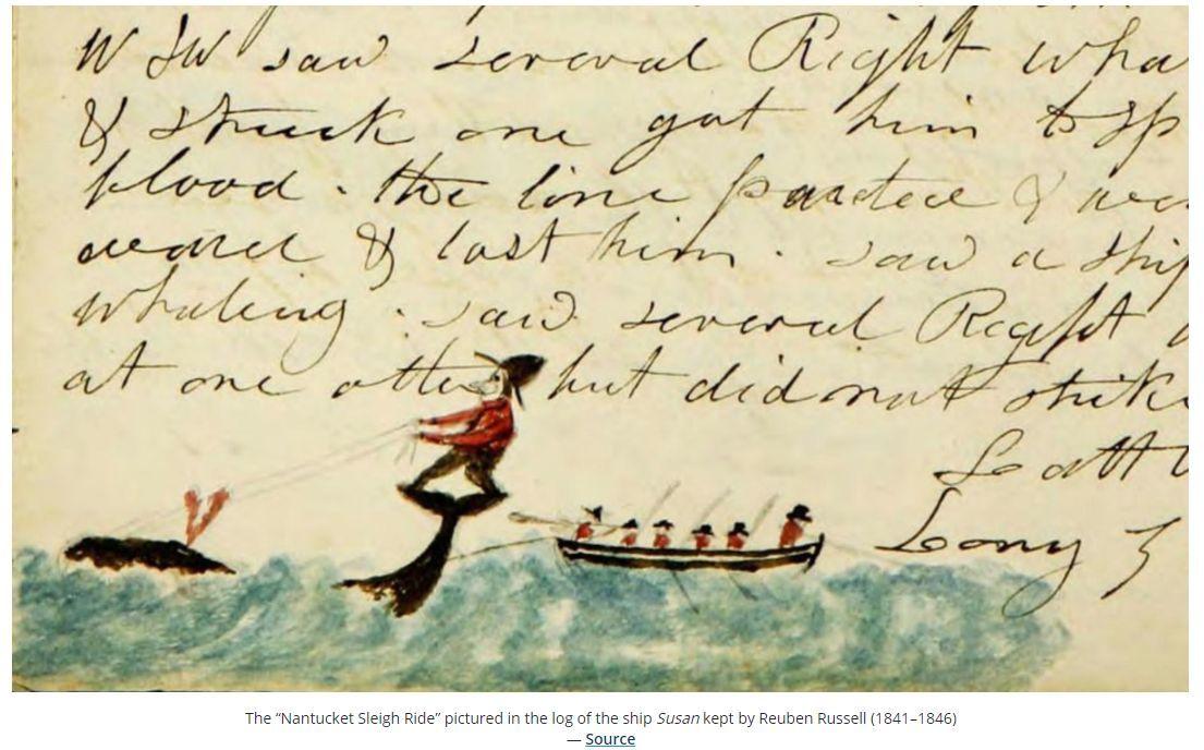 今日はプラス(ついでにアメリカ捕鯨船の航海日誌など)_c0025115_22104380.jpg