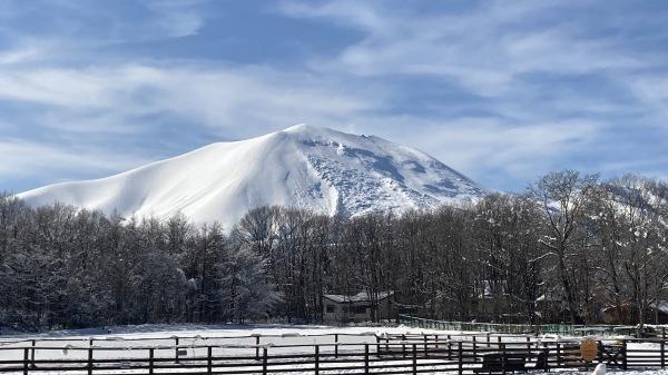 今シーズンいちの積雪だー!_b0174425_12121000.jpg