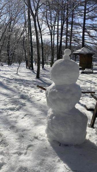 今シーズンいちの積雪だー!_b0174425_12191318.jpg