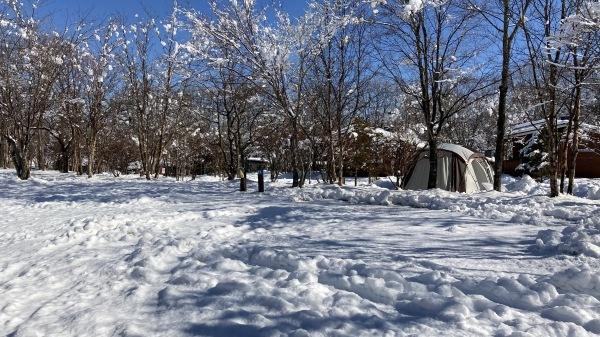 今シーズンいちの積雪だー!_b0174425_12441837.jpg