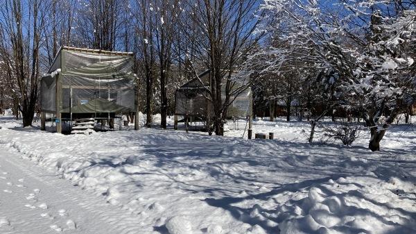 今シーズンいちの積雪だー!_b0174425_12443591.jpg