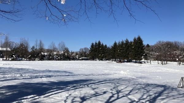 今シーズンいちの積雪だー!_b0174425_12485965.jpg