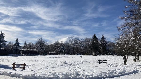 今シーズンいちの積雪だー!_b0174425_12490333.jpg