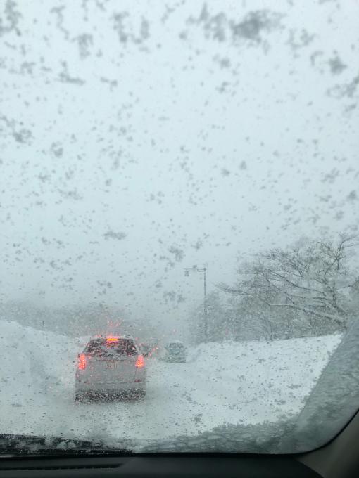 2021年1月8日 大雪の始まり。_d0182179_08435672.jpg