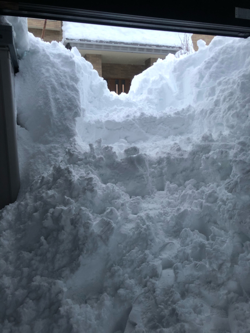 2021年1月8日 大雪の始まり。_d0182179_08455738.jpg