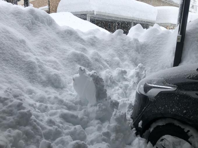 2021年1月8日 大雪の始まり。_d0182179_08460163.jpg