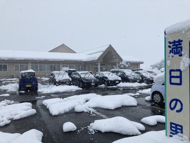 大雪を乗り切ろう_e0348093_16182459.jpg