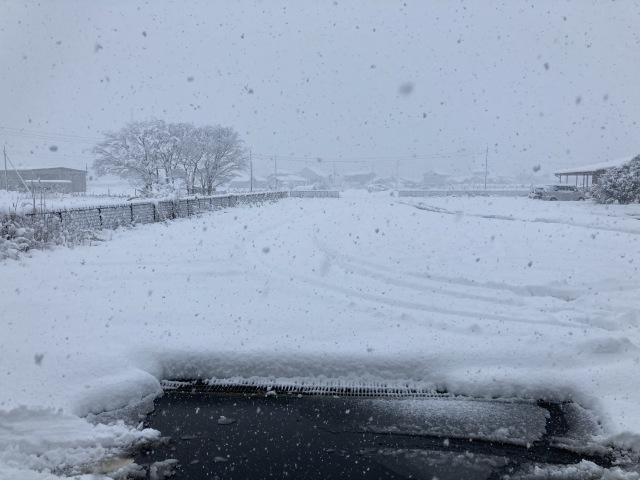 大雪を乗り切ろう_e0348093_16205935.jpg