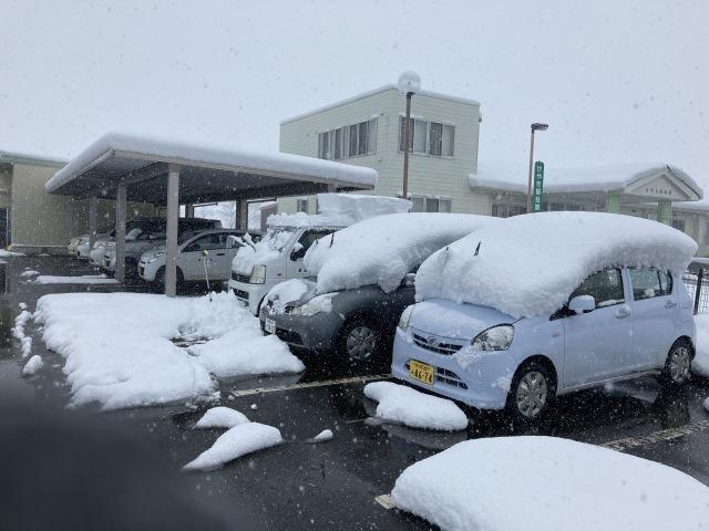 大雪を乗り切ろう_e0348093_16221485.jpg