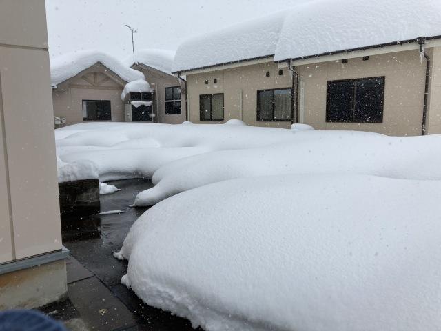 大雪を乗り切ろう_e0348093_16230402.jpg
