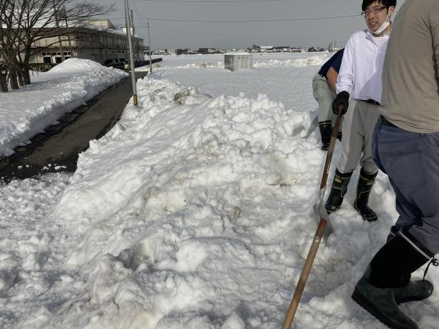 大雪を乗り切ろう_e0348093_16322792.jpg