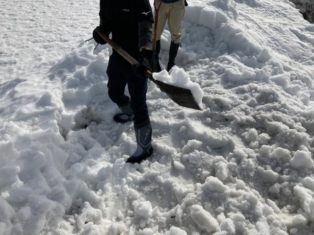 大雪を乗り切ろう_e0348093_16325045.jpg