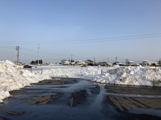 大雪を乗り切ろう_e0348093_16490082.jpg