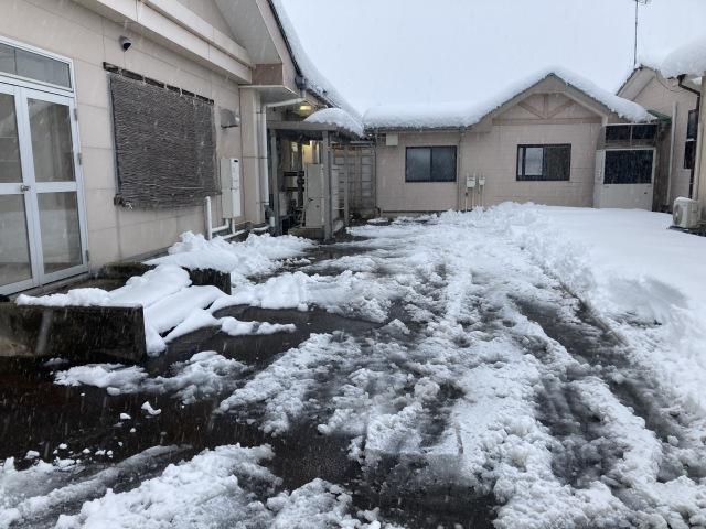 大雪を乗り切ろう_e0348093_16514663.jpg
