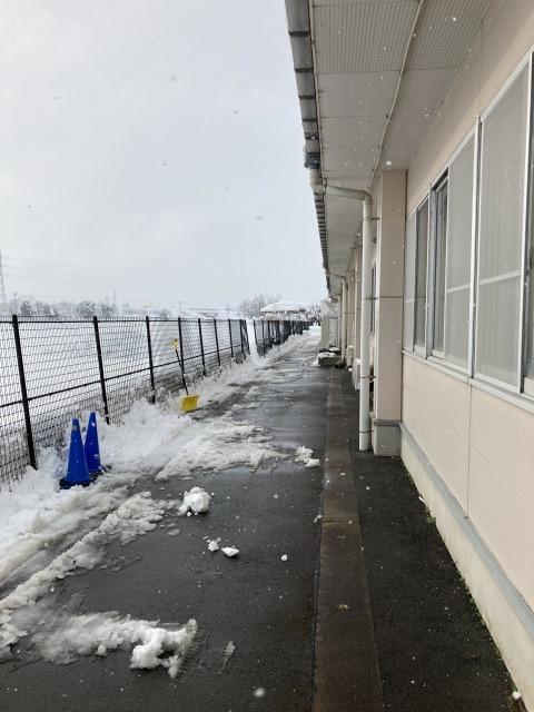 大雪を乗り切ろう_e0348093_16522590.jpg