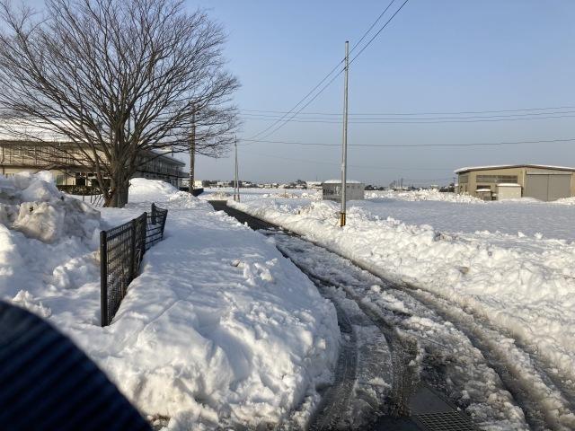 大雪を乗り切ろう_e0348093_16533947.jpg