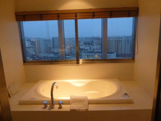 ホテルアークリッシュ豊橋_e0237625_16174328.jpg