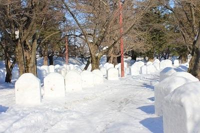 弘前公園冬さんぽ_2021.01.25撮影_d0131668_11493817.jpg