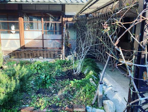たいせつな真冬の庭仕事。_d0077603_14532932.jpg