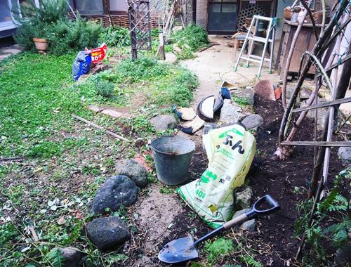 たいせつな真冬の庭仕事。_d0077603_14534490.jpg