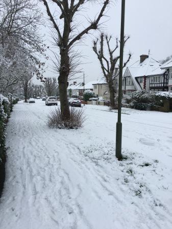 雪の日_f0123922_06420765.jpeg