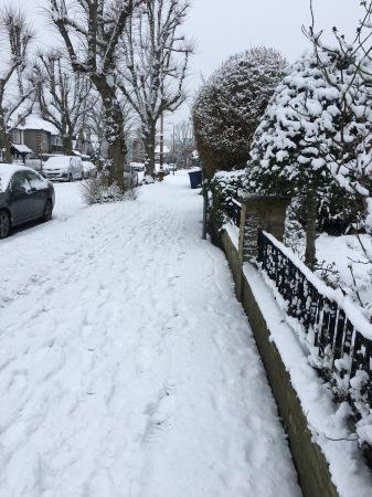 雪の日_f0123922_06483447.jpeg